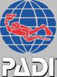 Diving in Bali - We offer PADI scuba  diving education in Bali !
