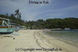 Scuba Diving in Bali & Dive Resort & Hotel Packages